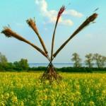 Landart-Objekt im Rapsfeld am Stettiner Haff auf der Insel Usedom