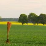 Landart als persönliches Zeichen in der gestalteten Natur